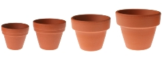 clay pots, repotting, terra cotta pots