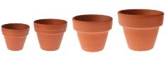 repotting house plants, terra cotta pots