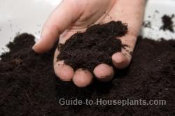 potting soil, potting mix